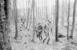 Waldbegang 1980
